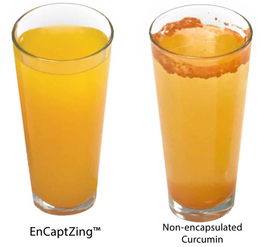 curcumin EnCaptZing™ comparison