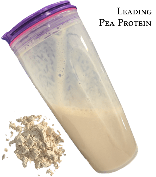 leading pea protein